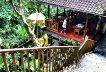 Bali / Jonathan in Bali