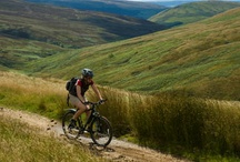 The Forest of Bowland / Not just a forest: this former Royal hunting domain is a rolling landscape of hills, moors and woodland, with wide open spaces and barely a soul in sight. Let us help you to enjoy one of England's last truly wild areas with all the best tips to not damage this wonderful environment.