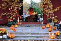 Autumn / by Jenny Free