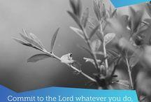 Hillsong Bible Verses