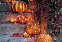 Halloween / Halloween
