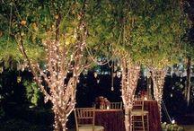 Garden Inspired Lighting
