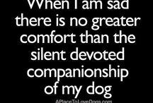 Doggie quotes