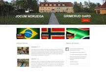 Criação de Sites Digital Prime Web Solutions / Snapshots de Sites criado pela Digital Prime Web Solutions