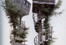 tree house/dream house / by Erin Gunter
