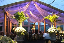 Tents and Cool Outdoor Spaces