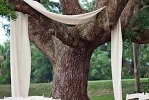 ağaç dekor