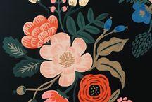 Flores ilustração