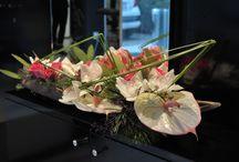 modern arrangements / Floral ideas