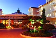 Hotels & Gastgeber