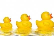 Rubber duckie your the one