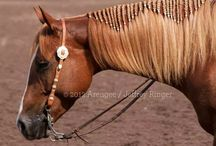 Paarden haar vlechten