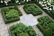 Garden wanders
