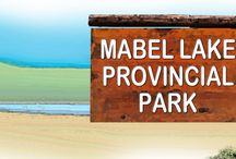 MABEL LAKE Provincial Park / A natural setting of lush forests, quieter sandy beaches, and a retreat away from more crowded urban centres makes Mabel Lake Prov Park one of the most popular destinations in the Okanagan.