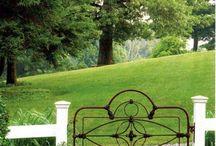 fence / by Melinda Pilkinton
