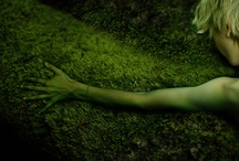 Moss Project