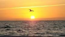 ~Sunsets & Sunrises~ / by Melissa Scott