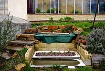 Water Harvesting + Re-use