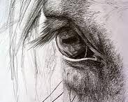 Dipinti di cavalli