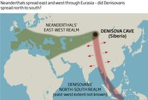 Denisovans / by The Leakey Foundation