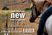 Horses and Wellness