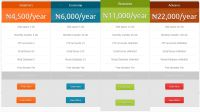 Web Hosting, Development, IT system and Security Companies in Nigeria