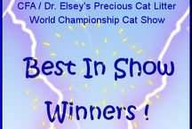 CFA World Show 2013 / The 2013 CFA Dr. Elsey's Precious Cat Litter World Championship Cat Show Novi, Michigan  / by Cat Fanciers Association