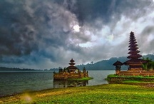 Go Bali 2013