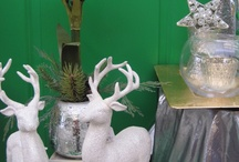 Winter Wonderland in my house / Christmas Decor / by Madeleine O'Hara