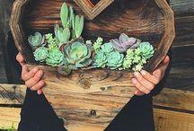 Ideas for th garden