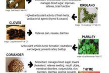 Comidas curativas
