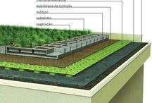 vihreä  katto