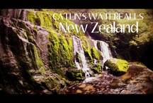 New Zealand's Highlights