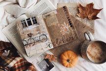 《 autumn 》