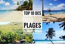 Martinica hols