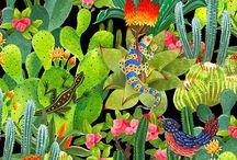 Kaktus všude kam se podíváš