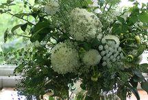 Décoration florale / Mettre en valeur les fleurs coupées