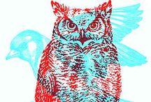 Lark owl beadandó