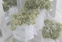 Flowers/Tablescapes / by Isabel Luff