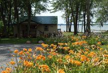 Sandy Pond rentals