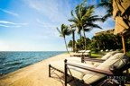 Miami Hotels / A collection of Luxury hotels