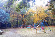 The Parks of Saitama 埼玉の公園