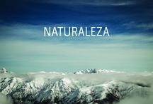 Abaco | Naturaleza / Horizontes de viaje