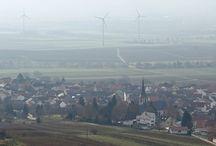 Wandern Rheinhessen / Wandertouren zum Wandern in Rheinhessen und Umgebung bis zur Pfalz, Ausflüge, Tipps, Ausrüstung (z.B. Schuhe)