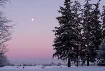 Winter scenes across the world / by Sarah Jamerson