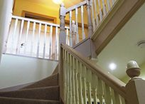 Painted stairs / A staircase made of a cheaper timber can be improved with a coat of paint. Adding some carpet can make the stairs softer to walk on and will protect the wood of the steps.