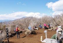 越前岳(愛鷹山)(富士山)登山 / 越前岳(愛鷹山)の絶景ポイント 富士山登山ルートガイド。Mount Fuji climbing route guide