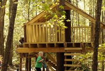 Treehouse Zipline / by Susan Tobin
