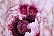 цветы аква