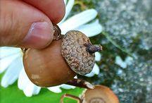 Fairy Garden Ideas / Cute fairy garden ideas and accessories for fairy houses.